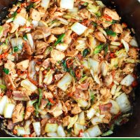 wok with stir-fried chicken, bacon, cabbage, red chilies, dried red chilies, and spring onions