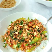 Ground pork and bok choy peanut sauce stir-fry on rice in plate with a spoon and topped with sesame seeds, chopped peanuts, coriander, and spring onion. Serving bowl with the stir-fry and bowl with peanuts in the back.