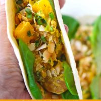 Hand holding up a folded soft taco with butter lettuce leaves, shrimp, mango, and toasted coconut flakes.