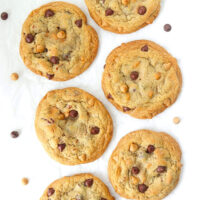 """Top view of six chocolate butterscotch chip pecan cookies surrounded by chocolate and butterscotch chips on parchment paper. Text overlay """"Soft & Chewy Chocolate Butterscotch Chip Pecan Cookies""""."""