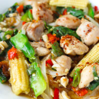 """Close up front view of plate with fresh flat wide rice noodles dish with chicken, veggies, and gravy. Text overlay """"Rad Na Gai (Thai Gravy Noodles with Chicken)"""""""