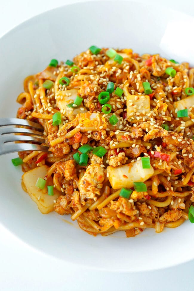 Front view of plate with stir-fried chicken noodles dish with a fork tucked into the side.