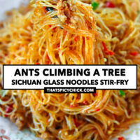 """Chopsticks holding up noodles and pork above a plate with stir-fried noodles. Text overlay """"Ants Climbing A Tree"""", """"Sichuan Glass Noodles Stir-fry"""", and """"thatspicychick.com""""."""