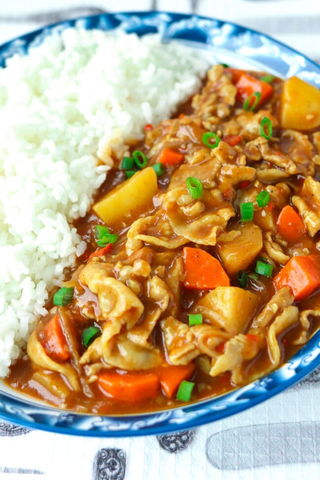 Close-up front view of Japanese curry with pork, carrots, potatoes on plate with rice.