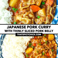"""Front and top view of curry and rice on plate. Text overlay """"Japanese Pork Curry"""", """"With thinly sliced pork belly"""", and """"thatspicychick.com"""""""