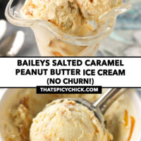 """Ice cream in a dessert glass and a paper carton. Text overlay """"Baileys Salted Caramel Peanut Butter Ice Cream (No Churn!)"""" and """"thatspicychick.com""""."""
