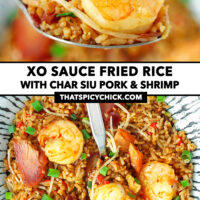 """Spoon holding up a bite of fried rice, and top view of fried rice on a plate. Text overlay """"XO Sauce Fried Rice with Char Siu Pork & Shrimp"""" and """"thatspicychick.com""""."""