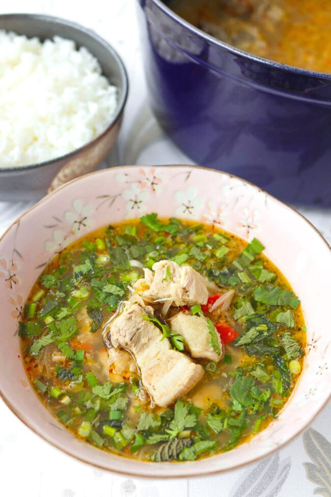 Front view of pork rib soup in a bowl. Pot with soup and rice bowl behind.